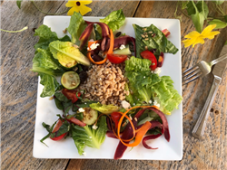 Summer Salad with Lemon Farro